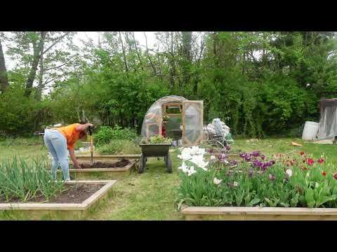 You Reap What You Sow: Veggie Garden Prep | Gardenaddictz