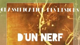 Mécanisme de lésion d'un nerf