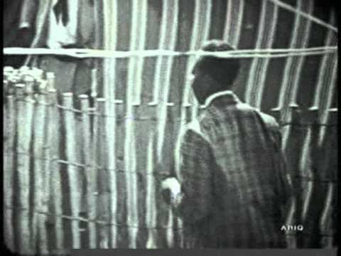John Lee Hooker - Me And My Telephone