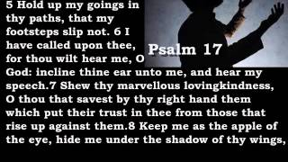 Bible Reading Psalm 17