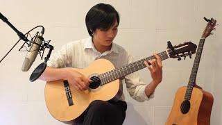 Million Scarlet Roses (Guitar Solo) - Миллион Алых Роз (Triệu Đóa Hoa Hồng) - Nguyễn Bảo Chương