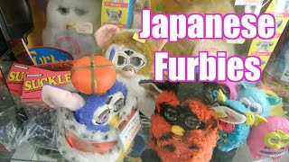 Japanese Speaking FURBY!