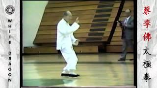 Yang Style Tai Chi Chuan - Great Grandmaster Hu Yuen Chou
