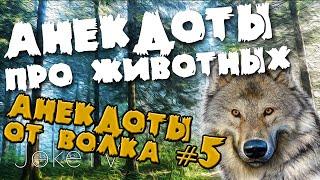 Анекдоты про животных. Анекдоты от Волка #5