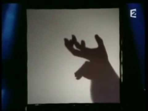 hand shadow puppets performance