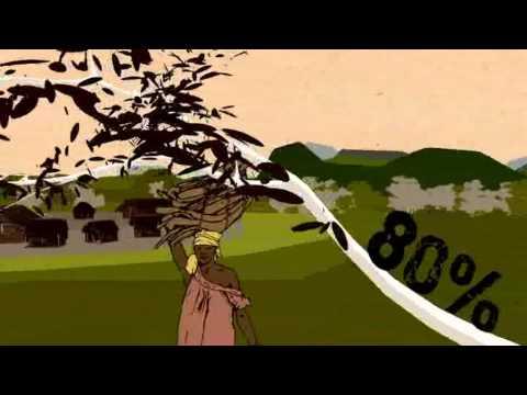 Видео Green environment essay
