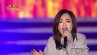 【HD】徐佳瑩 - 突然好想你 @2016台中好跨年晚會