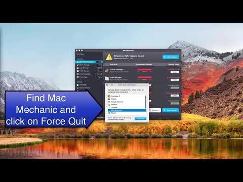 Mac Mechanic virus removal video.