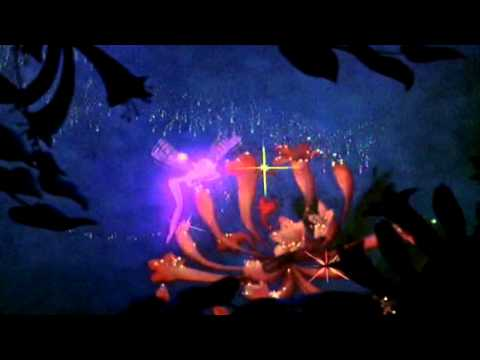 Fantasia || Dance of the sugar plum fairy