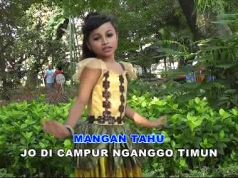 Tasya Rosmala - Rek Ayo Rek - Lagu  Anak Anak