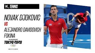 NOVAK DJOKOVIC vs ALEJANDRO DAVIDOVICH FOKINA   Tennis - Highlights