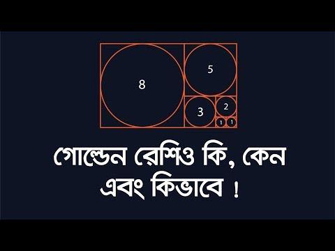 Illustrator Bangla Tutorial: Golden Ratio in Graphic Designing   গোল্ডেন রেশিও কি, কেন এবং কিভাবে !