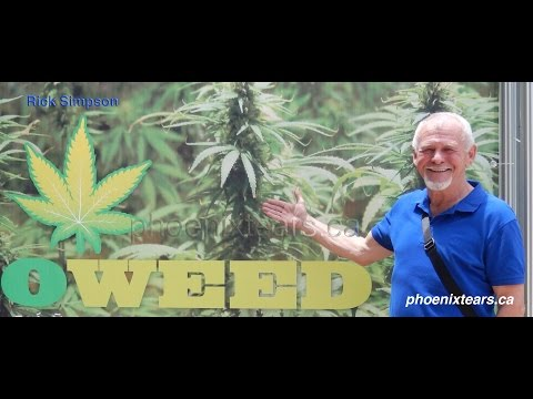 The Deep End 005: Rick Simpson / Cannabis Hemp Solutions to Human Problems