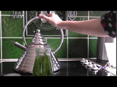 Herbal Asthma Cure Stinging Nettle + Plantain tea