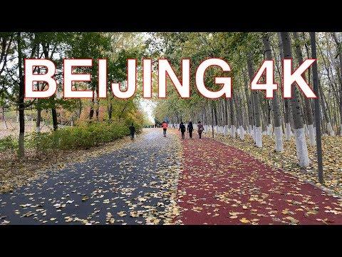 Beijing 4K - Walk at Olympic Forest Park - Beijing - China 中国北京奥林匹克森林公园行走视频2