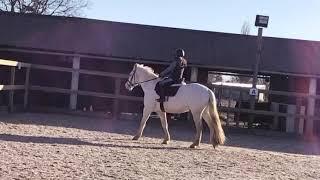 Lekker rijden met Toby //zussen tussen de paarden