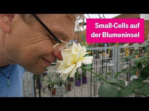 Social Media Post: Small-Cells: Mobilfunk für die Blumeninsel #tnt17