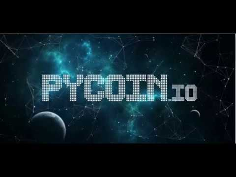 PYCOIN: A Scalable Decentralized Zero knowledge Platform for Secure Smart