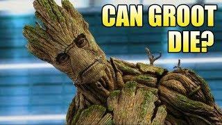 Can Groot Die?