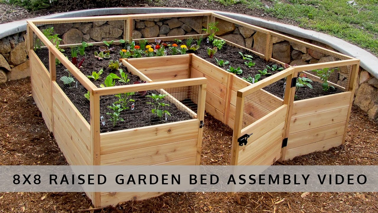 garden in a box 8x8 assembly video olt