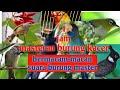 Masteran Burung Masteran Burung Kacer 1 Jam Menjadi Kacer Rol Tembak Speed Rapat Pikatan(.mp3 .mp4) Mp3 - Mp4 Download
