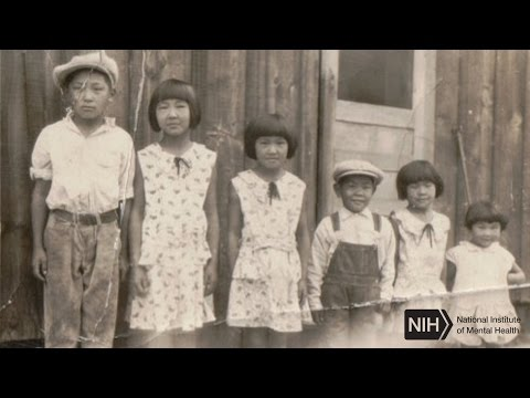 Mental Illness in Stressful Times - An Asian-American Family's Story