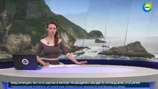 В Тихом океане спрятался новый материк - МИР24