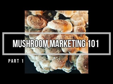Marketing your Mushroom Business