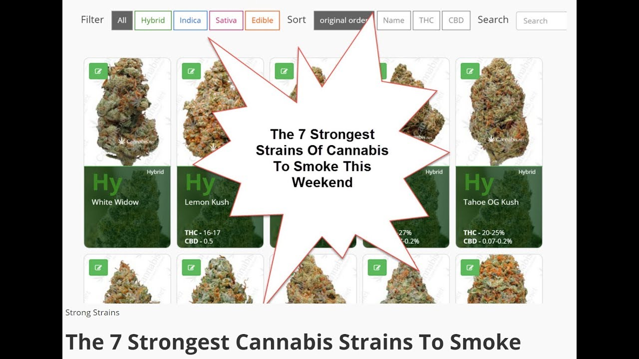 The 7 Strongest Cannabis Strains On Earth