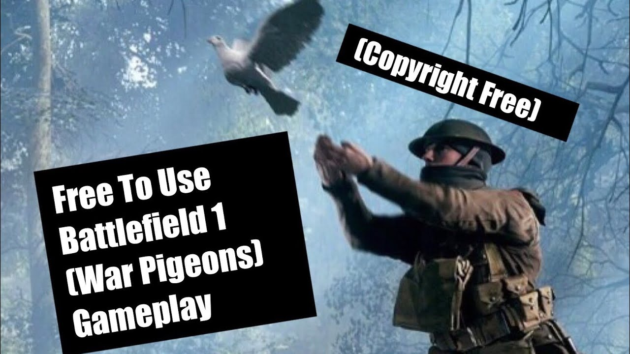 Free To Use Battlefield  Gameplay War Pigeons No Copyright