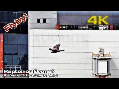 Drone derniere generation: Drone rapide: Drone en promotion: Acheter un Drone: Top 6 Des Meilleurs Drones Voyage En 2020 - Les Voyages Pas Chers De Léo pas cher livraison rapide livraison en 24h