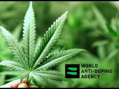 WORLD ANTI-DOPING AGENCY LIFTS CBD BAN