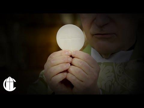 Catholic Mass: 10/9/19 | Wednesday of the Twenty-seventh Week in Ordinary Time