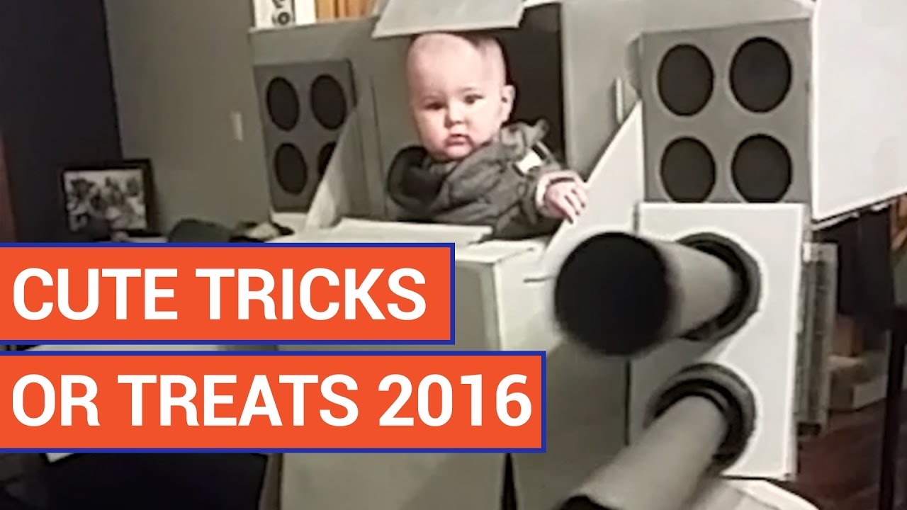 Cute Tricks or Treats 2016 Video Compilation 2016 | Daily Heart Beat