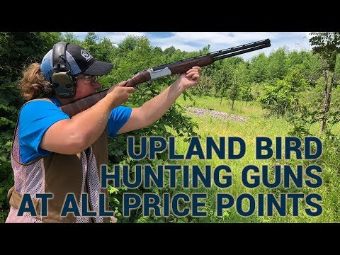 Upland Bird Hunting Guns At Different Prices