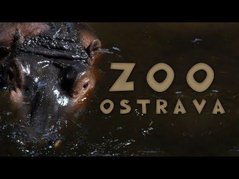 Magiczne Miejsca - ZOO w Ostrawie