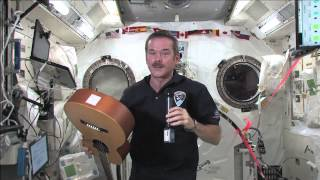 Canadians Converse About Life in Space