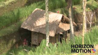 印尼 峇里島 小屋 稻田  Small shed in rice terrace in Bali, Indonesia  hm2630000170