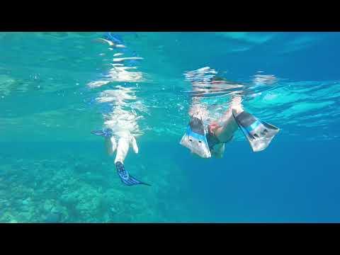 Keep the ocean clean  - Eels Garden Dahab