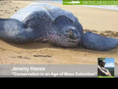 Conservation in an Age of Mass Extinction: Behind the Schemes, Episode 16