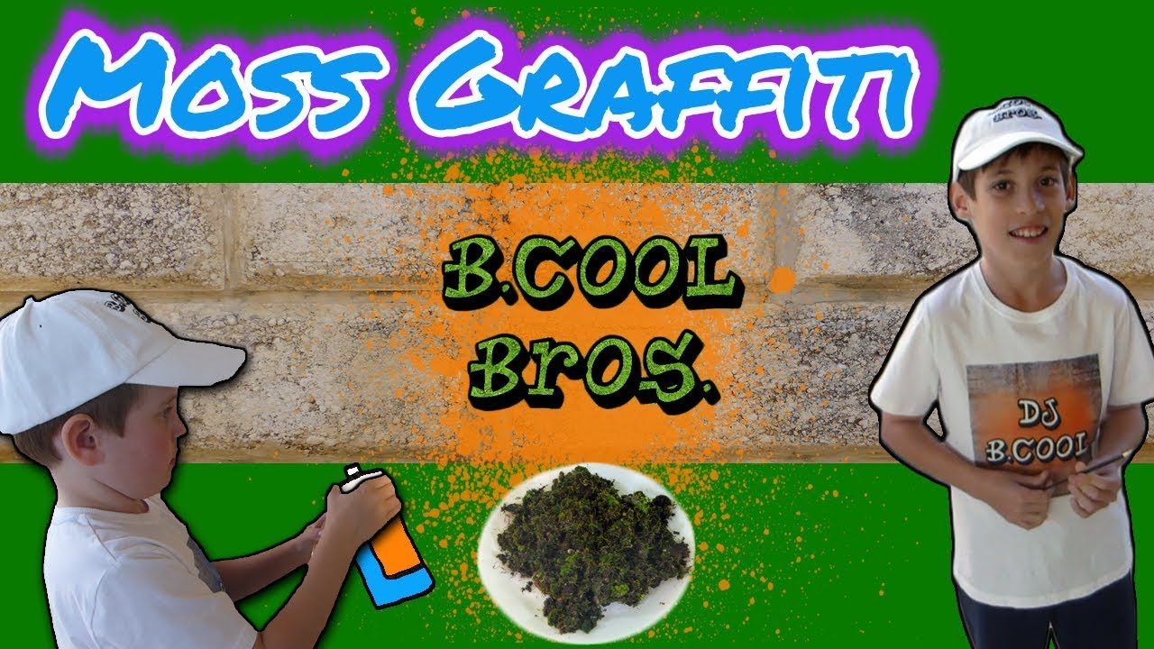 Moss Graffiti Cool DIY Art Project - YouTube