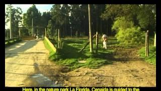 Documental Rio Bogota