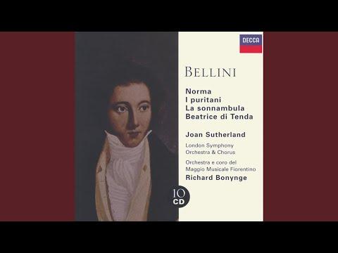 Bellini: Norma / Act 1 - Svanir le voci!