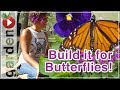 Building A Butterfly Garden - With Drake White The Butterfly Lady - Part 1
