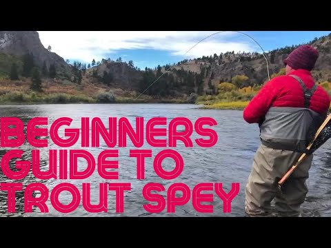 An Introduction To Trout Spey - Highlighting Sage Pulse, Redington Hydrogen, & Rio Trout Spey Lines