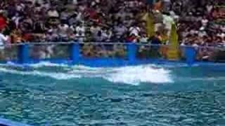 Miami Seaquarium_2