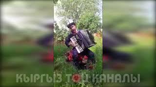 Жаш талант Аккордеондо соонун ырдады Маматов Талгат
