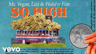 Walshy Fire So High.mp3