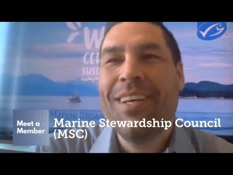 Meet Marine Stewardship Council (MSC)