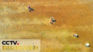 [国际财经报道]热点扫描 南方持续高温 多省区现旱情| CCTV财经